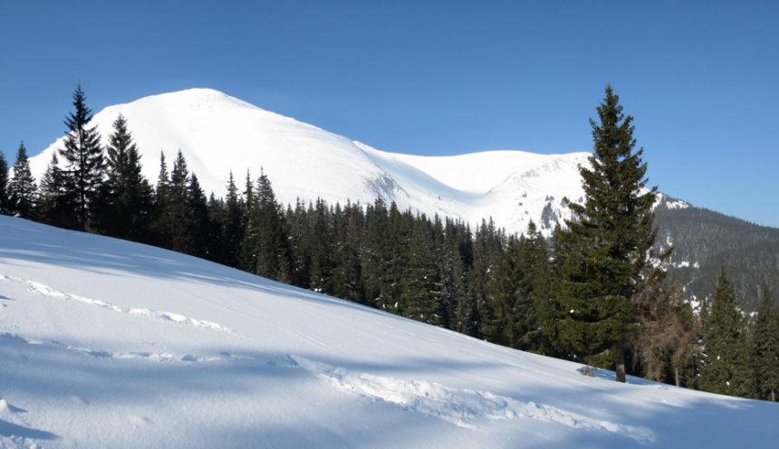 Карпатські пригоди запорізьких альпіністів-початківців