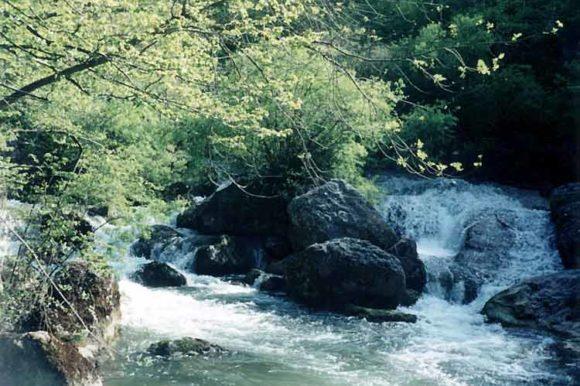 Пороги на Черной речке